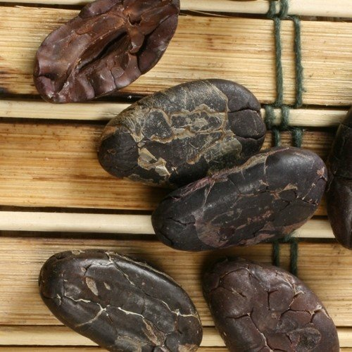 - Organic Whole Shelled Cacao Beans (12 ounce)