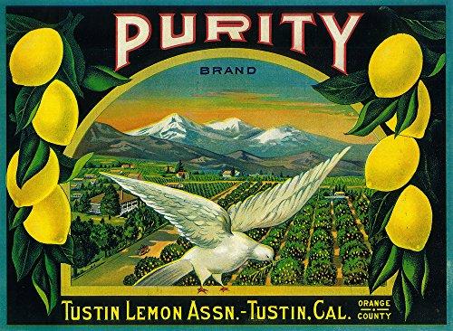 Purity Lemon - Vintage Crate Label (9x12 Art Print, Wall Decor Travel Poster) ()