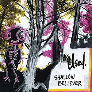 Shallow Believer Vinyl The Used Amazon Ca Music