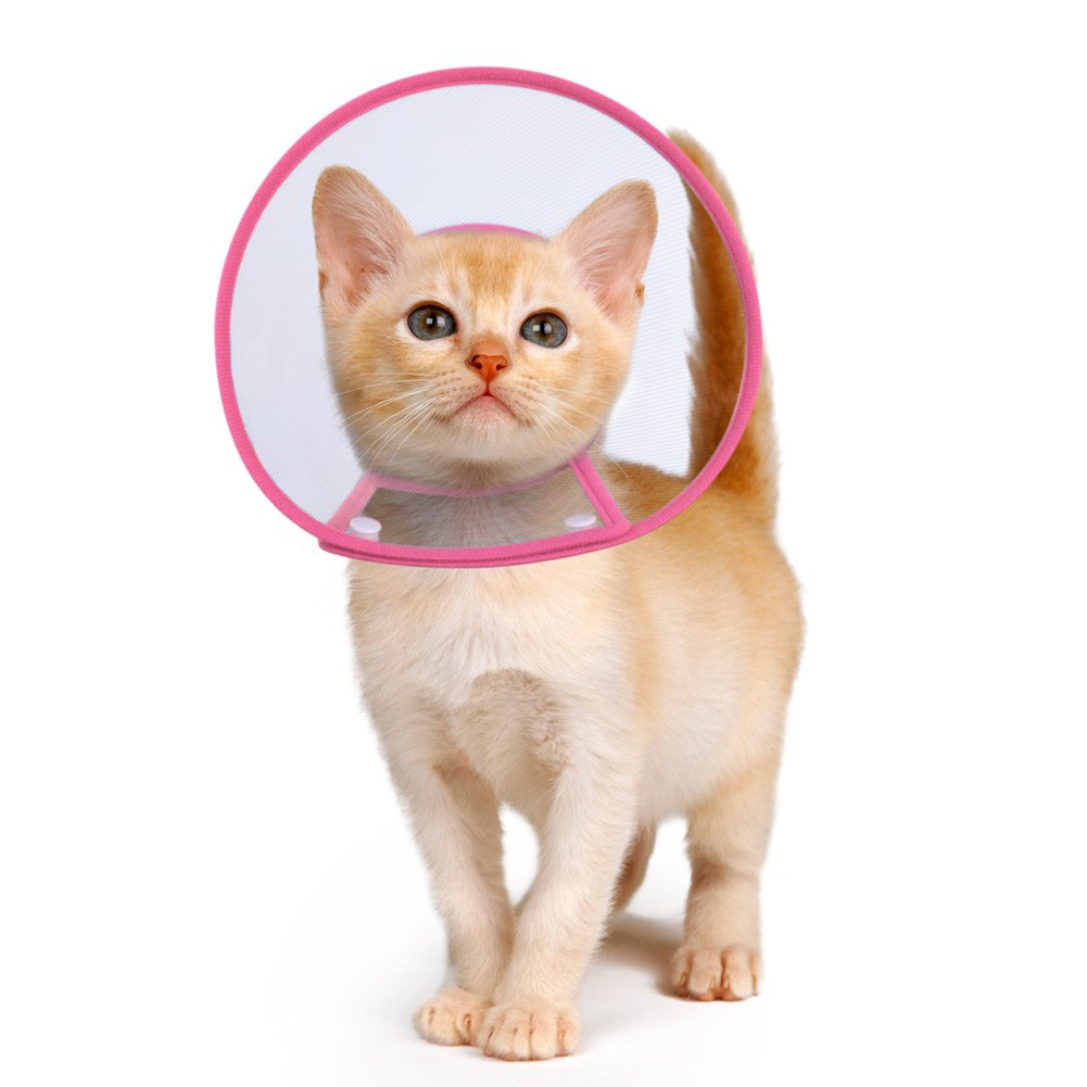 PETBABA Cat Cone Collar in Recovery, Clear Elizabethan Not Block Vision, Soft Padded E-Collar Protect Neck, Suitable Kitten Puppy Dog Pet in Surgery Remedy Grooming - S in Rose by PETBABA
