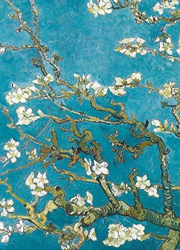 Vincent Van Gogh Poster Photo Wallpaper