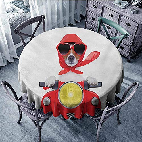 Dog Driver Non-Iron Round Tablecloths Stylish Canine with Scarf Sunglasses Fashion Model Riding Scooter Funny Animal Dust-Proof 67