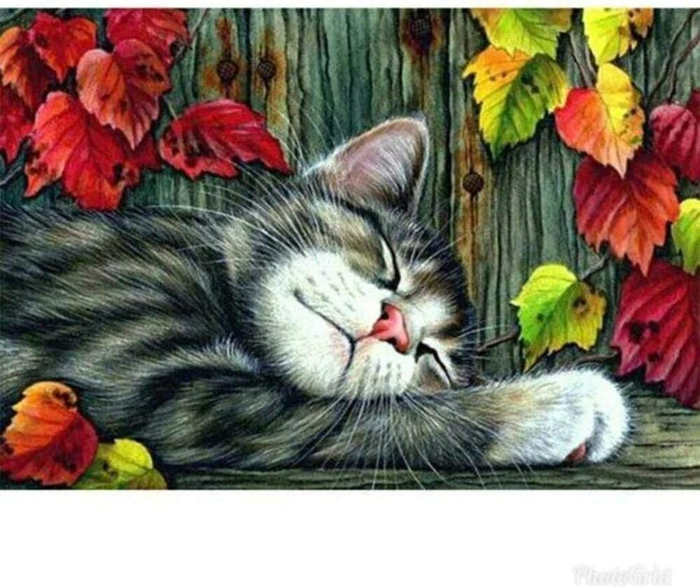 Stamped Cross Stitch Kits-Cat sleeping in the bushes-11CT Printed Embroidery with Pattern Needlepoint Starter Kit for Adult Beginners and Kids for Home Decor and Gifting 16x20 inch