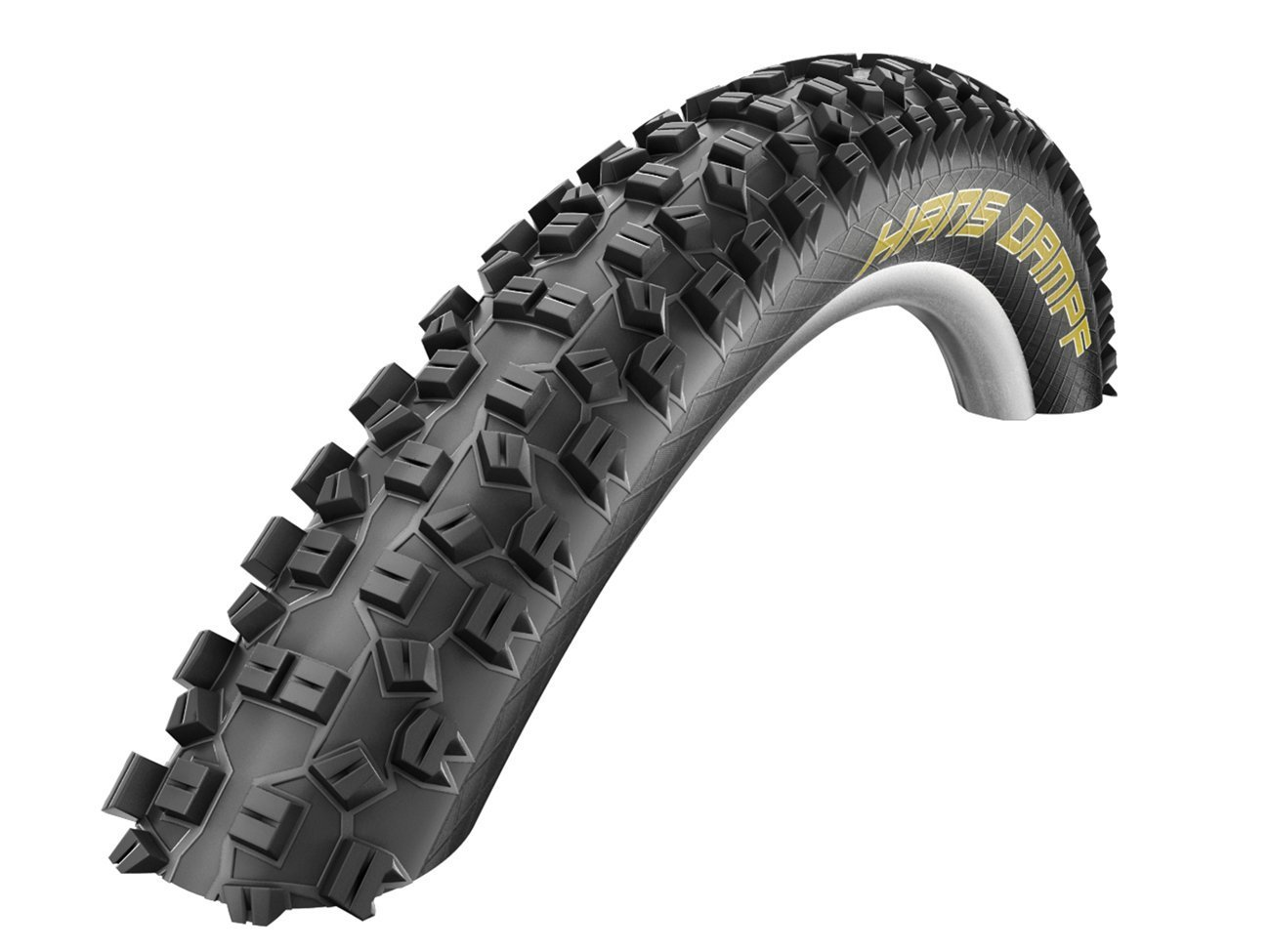 Schwalbe Hans Dampf Evolution Line Tire with Trail Star Compound 29 x 2.35-Inch Black [並行輸入品] B077QH3HGR