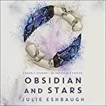 Obsidian and Stars | Julie Eshbaugh