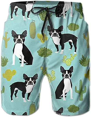 Tyugvvo French Bulldog Funny Swim Trunks Quick Dry Beachwear Sports Running Swim Board Shorts Mesh Lining
