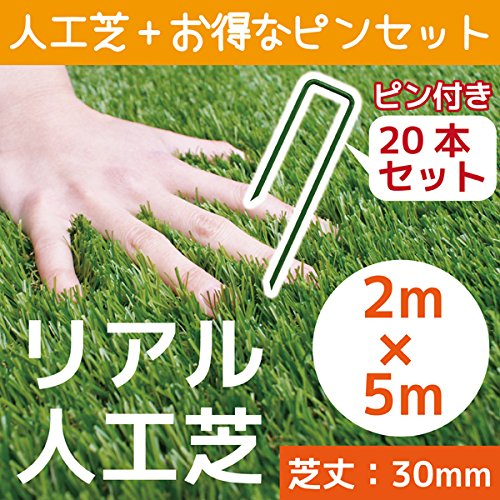 人工芝 C型 芝丈30mm 2m×5m 押さえピン20本付 お得セット これでお庭をリニューアル!! B01ICGHC5O 19500