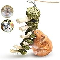 Bunny Chew Toys, Rabbit Toys for Teeth Molar Improve Dental Health 100% Natural Organic Wood Apple Sticks with Grass…