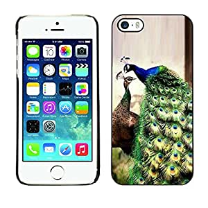 Plastic Shell Protective Case Cover || Apple iPhone 5 / 5S || Green Teal Blue Vibrant @XPTECH