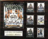 C&I Collectables NFL Seattle Seahawks 16x20-Inch Super Bowl XLVIII Champions Plaque