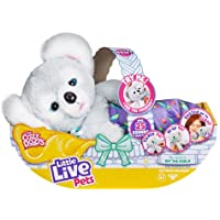 Little Live Pets 26233 Cozy Dozy Koala Kip Electronic Pet