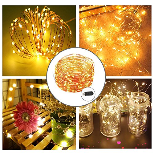 LED String Lights 33 feet with 100 LEDs, HAISSKY Waterproof Decorative Lights for Home Decoration,Shop Window,Club,Wedding,Hotel,Business Building,Festival (USB CHARGER)