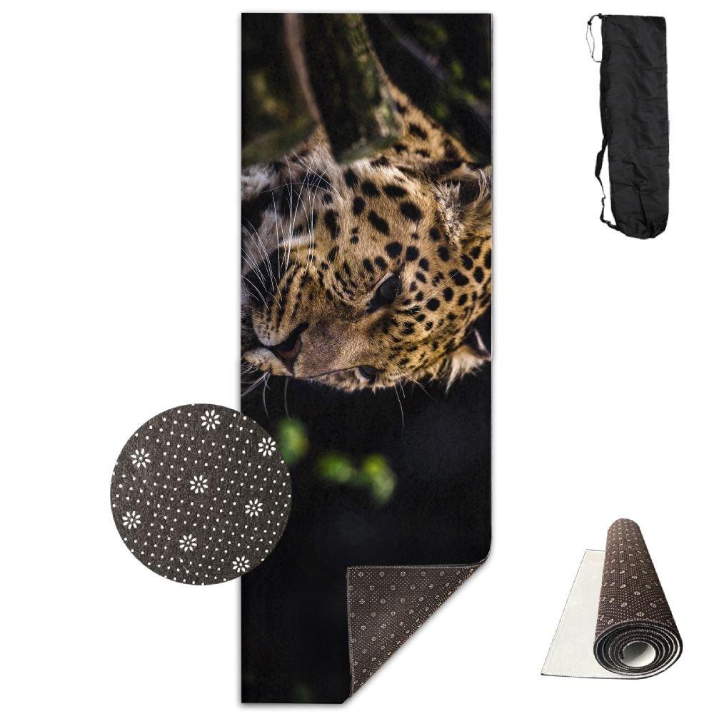 Amazon.com: Leopard Muzzle Big Cat Yoga Mat,Crystal Fabric,bottom Non-woven  Point Plastic.: Home & Kitchen