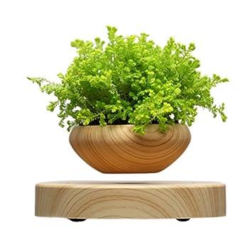 magnetic floating bonsai pots bonsai tree pot floating bonsai plant pot for office bonsai tree for office