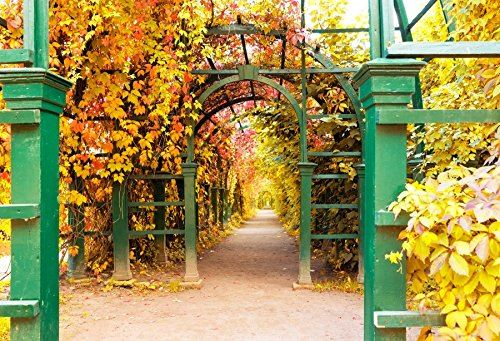 - Baocicco 10x6.5ft Vinyl Autumn Park Backdrop Green Arch Gate Plants Covered Passage Maple Leaves Background Gold Fall Season Landscape Leisure Vacation Relaxing Walk Kid Adult