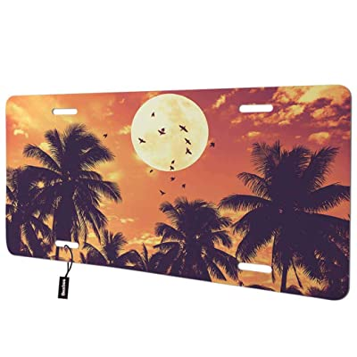 Beabes Beautiful Scene Front License Plate Cover,Tropical Paradise Tree Birds Moon Sky Decorative License Plates for Front of Car Vanity Plate for Men Women Alumium 6x12 Inch: Automotive