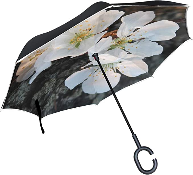 Double Layer Inverted Inverted Umbrella Is Light And Sturdy Cherry Spring Flower Background Reverse Umbrella And Windproof Umbrella Edge Night Reflec
