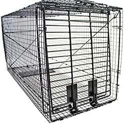 "Humane Trap - Live Animal (Coyote, Stray Cat, Fox, Raccoon) Trap - 50""x24""x19"""