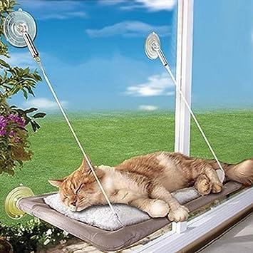 La Ventana del Gato La Percha del Asiento de la Cama Hamaca Que Toma el Sol Los Cojines del Gato se Pueden Desmontar y Lavar: Amazon.es: Productos para ...
