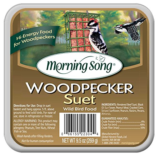 Morning Song 11462 Woodpecker Suet Wild Bird Food, 9.5-Ounce ()
