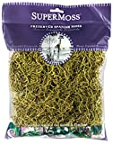 SuperMoss (26959) Spanish Moss Preserved, Basil, 4oz