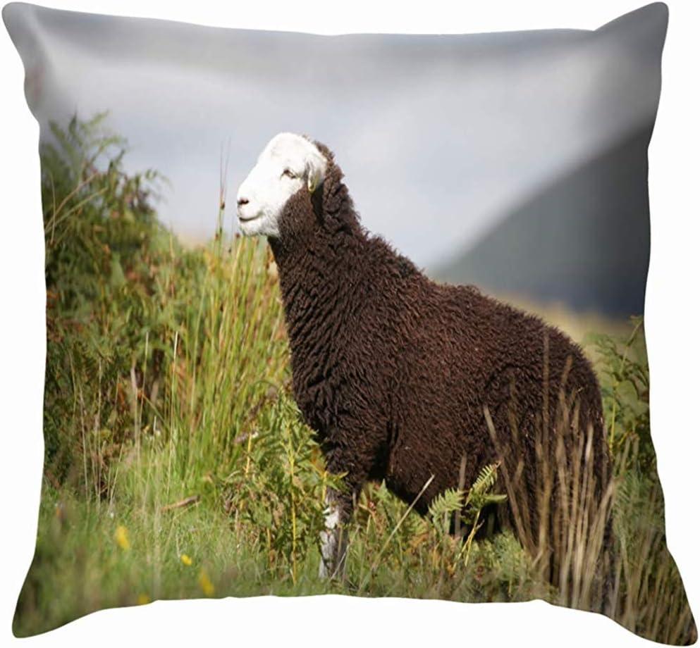 Duang Throw pillow covers Sheep Walking