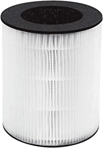 Homedics TotalClean Replacement Filter, White