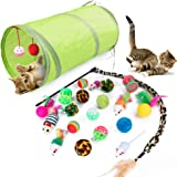 21Pcs Cat Toys Kitten Toys Assortments,Tunnel Balls Fish Feather Teaser Wand Mice for Cat Puppy Kitty