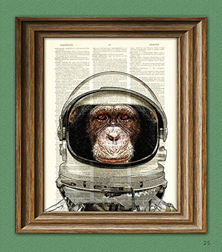 Chimp Chimpanzee - Astronaut Art Print Space Chimp Chimpanzee in helmet illustration beautifully upcycled dictionary page book art print
