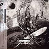 Secrets of Beehive by David Sylvian (2008-07-02)
