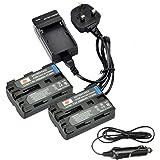 DSTE 2pcs NP-FM500H Rechargeable Li-ion Battery with Charger DC01 for Sony Alpha SLT-A57, A58, A65, A65V, A77, A77V, A99, CLM-V55, DSLR-A100, A200, A300, A350, A450, A500, A550, A560, A580, A700, A850, A900 Digital Cameras