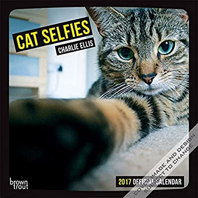 Cat Selfies 2017 Square