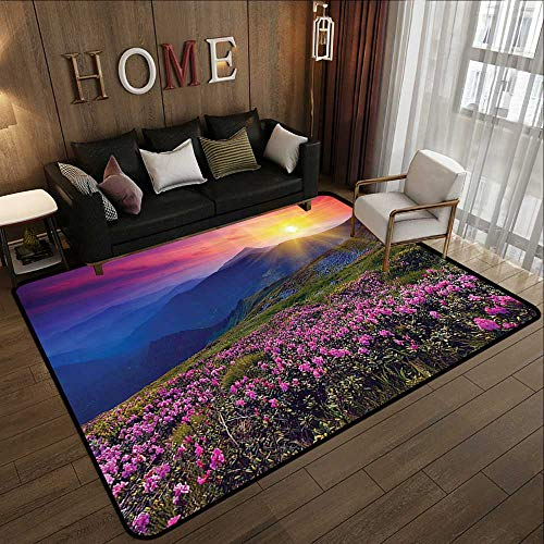 Natural Fiber Area Rug,Nature Landscape Decor Collection,Magical Fairy Horizon with Flowers on The Valley and Mountain Mysterious Photo Deco,Mu 78.7