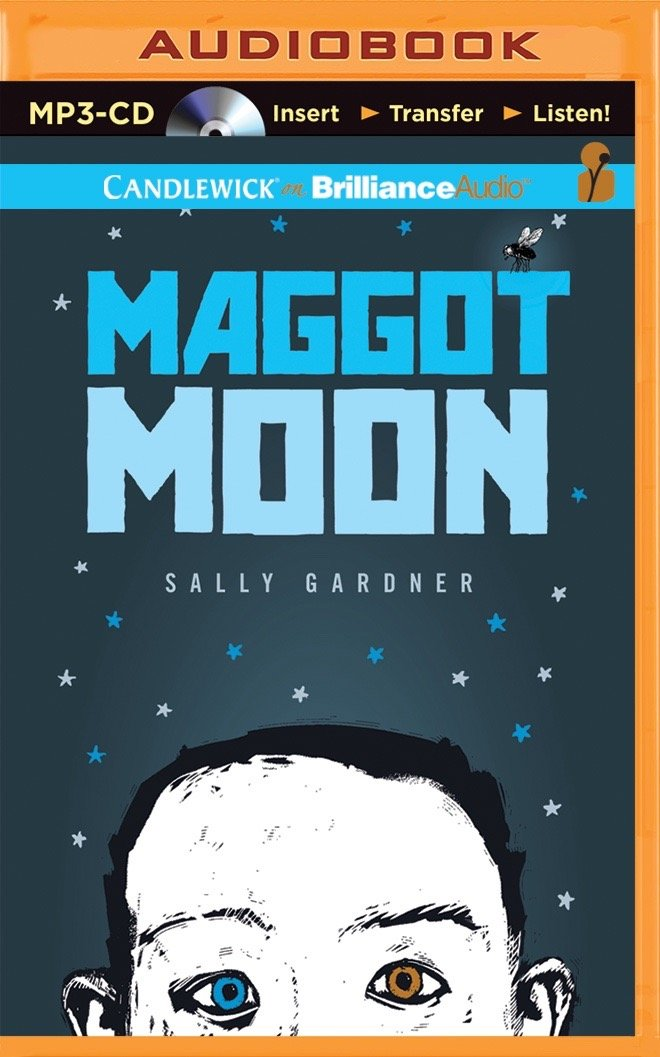 Maggot Moon ebook