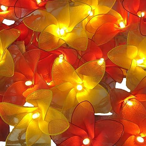 hot sale online 6e575 6e155 BLAZE ON® Haute Couture Daisy Petal Fairy Lights (Fire Tones) - 20 LED -  Low Voltage Mains Powered Hand-Crafted Warm White Decorative Lights - UK  Plug ...