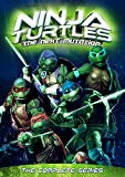 "The series introduced many new elements to the Teenage Mutant Ninja Turtles, including a female mutant turtle called Venus (named after the famous statue) and new central antagonists, an army of humanoid dragons known as ""The Rank"" led by the vicious..."