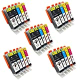 GREENSKY 25 Pack Compatible Ink Cartridge Replacement For Canon PGI-250 & CLI-251 (5BX,5B,5C,5M,5Y) Compatible With Canon PIXMA MG5520 MG5420 MG6320 MG7120 MX722 MX922 iP7220 iP8720 iX6820 etc