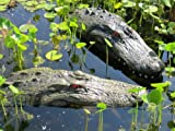 22'' & 28'' Alligator Head Decoy Kit with Reflective Eyes For Canada Geese & Blue Heron Control