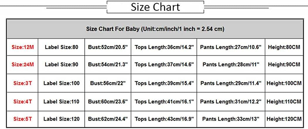 Jimmackey Bambino Ragazzi Camicia Stampa Coccodrillo T-Shirt Cime Pulsante Pantaloncini Abiti Set