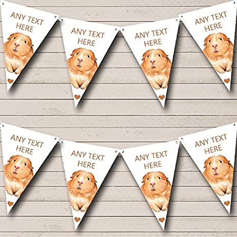 Cute Watercolour Guinea Pig Personalized Childrens Party Bunting Flags Banner The Card Zoo