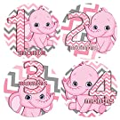 PINK CHEVRON ELEPHANTS GIRL 1-12 Months Baby Monthly One Piece Stickers Baby Shower Gift Photo Shower Stickers