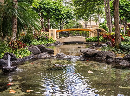 Home Comforts Acrylic Face Mounted Prints Bridge Water Koi Pond Outdoors Nature Pond Resort Print 14 x 11. Worry Free Wall Installation - Shadow Mount is ()