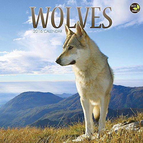 2016 Wolves Wall Calendar