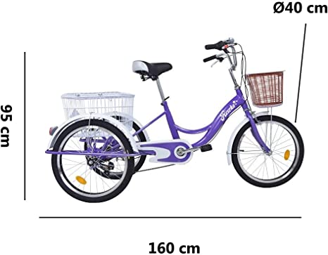 Riscko - Triciclo Adulto con Dos Cestas Bep-14 | Azul Turquesa sin Montaje | 6 velocidades | Ruedas de 20