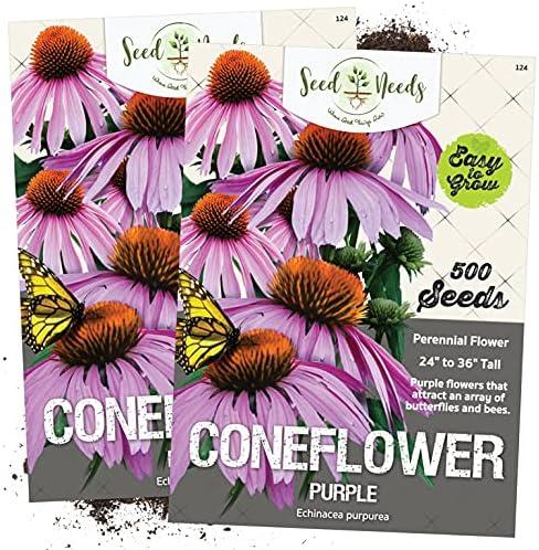 Double Orange Coneflower Seeds Echinacea Perennial Flowers Seed 50pcs