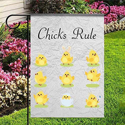 (kaiyi Personality Polyester Garden Flag,1 Side House Flag,Chicks Rule)