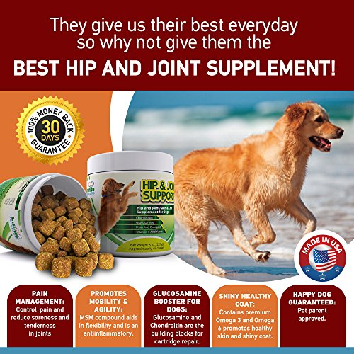 infinite pawsibilities hip joint glucosamine chondroitin