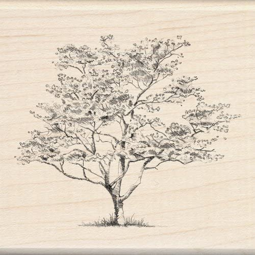 1pc 4.02L x 2.77W Inkadinkado Spring Blooming Tree Wooden Mounted Rubber Stamp for Card Making and Scrapbooking