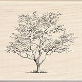 Inkadinkado Small Dogwood Wood Stamp