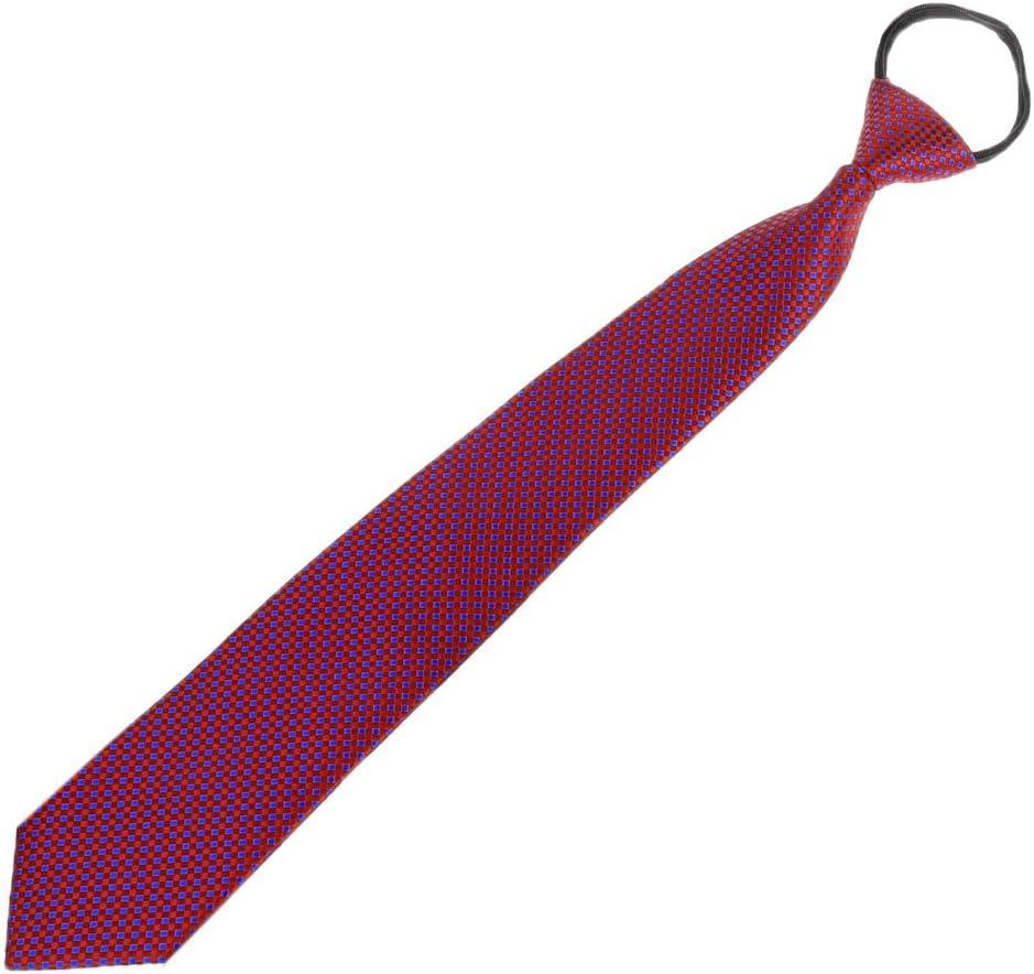 Junlinto Hombres Pre-Atados con Cremallera Ajustable Tie Corbata Plaid Dot Business Formal Wedding Blue